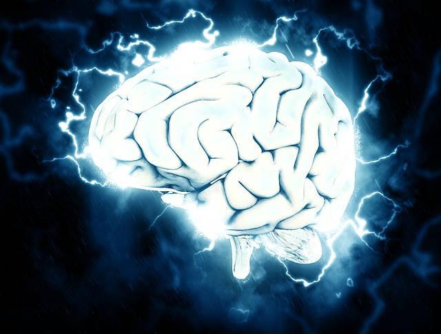 finanças pessoais cuidar do cérebro 640x484 jpg - Saúde Do Cérebro - 5 Dicas Para Cuidar Bem Dela.