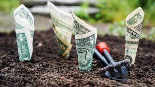clube patrimônio-investir dinheiro
